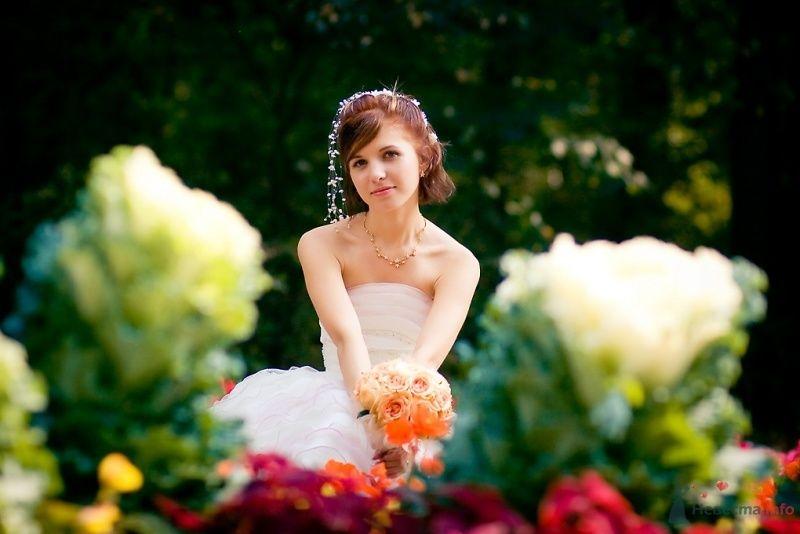 Фото 51697 в коллекции Свадьба Александра и Ольги - Sunny-Angel