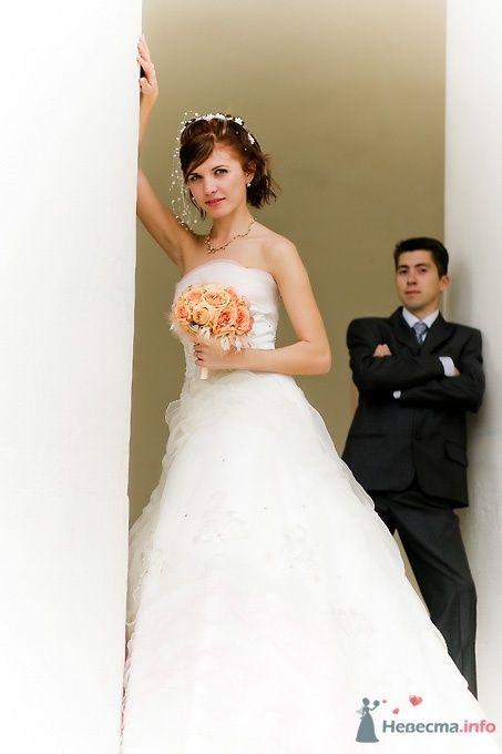 Фото 51700 в коллекции Свадьба Александра и Ольги - Sunny-Angel