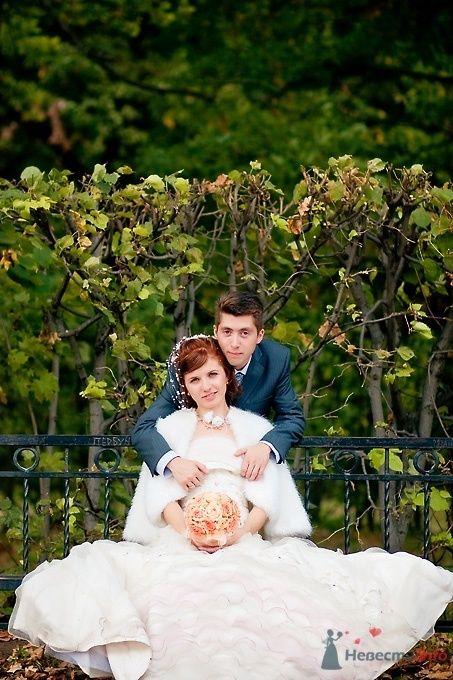 Фото 51708 в коллекции Свадьба Александра и Ольги - Sunny-Angel