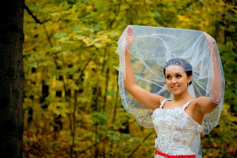 Фото 51849 в коллекции Свадьба Эльдара и Анны - Sunny-Angel