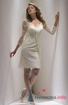 Фото 56292 в коллекции Свадьба - FALLINLOVE