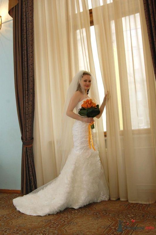"""Фото 25044 в коллекции """"Сквозь тернии к звёздам"""" - наша свадьба состоялась! :) - Minutka"""