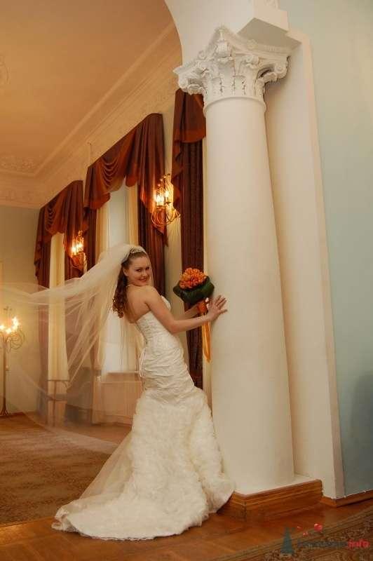 """Фото 25049 в коллекции """"Сквозь тернии к звёздам"""" - наша свадьба состоялась! :) - Minutka"""