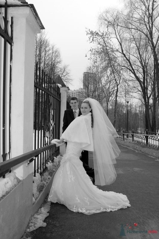 """Фото 25069 в коллекции """"Сквозь тернии к звёздам"""" - наша свадьба состоялась! :)"""