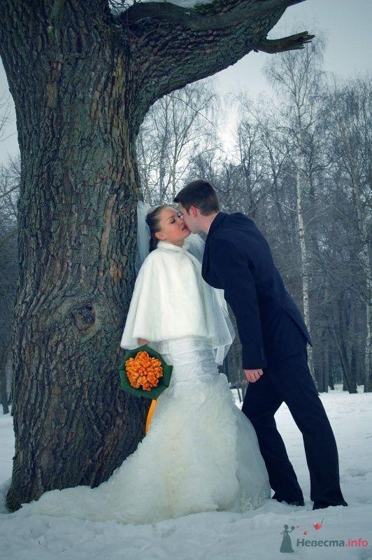"""Фото 25070 в коллекции """"Сквозь тернии к звёздам"""" - наша свадьба состоялась! :) - Minutka"""