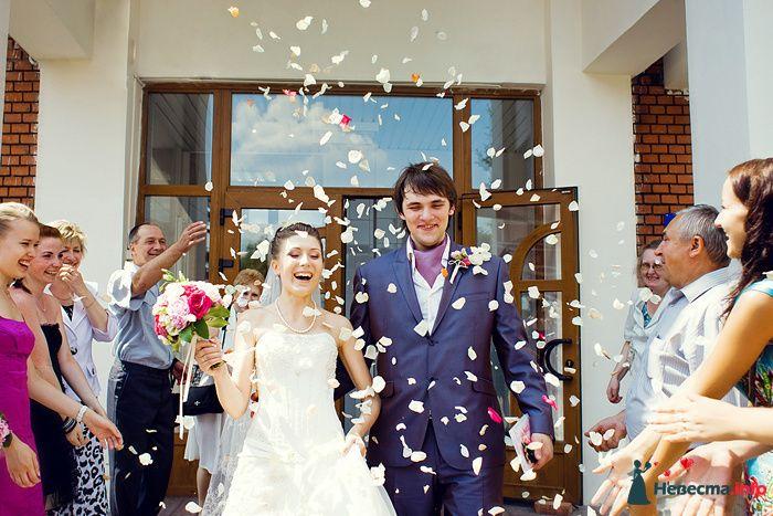 Свадьба в ЗАГСе - фото 130816 Фотограф Владимир Будков