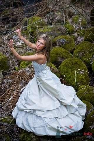 Фото 3983 в коллекции Разное (не мои работы) - Свадебный распорядитель - Бедрикова Оксана