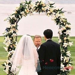 Фото 4060 в коллекции Разное (не мои работы) - Свадебный распорядитель - Бедрикова Оксана