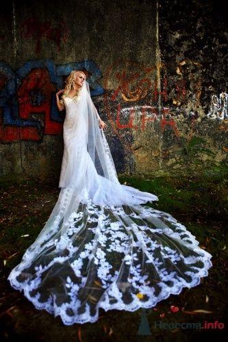 Фото 16121 в коллекции Разное (не мои работы) - Свадебный распорядитель - Бедрикова Оксана