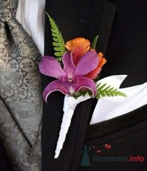 Фото 20591 в коллекции Разное (не мои работы) - Свадебный распорядитель - Бедрикова Оксана