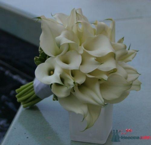 Фото 20634 в коллекции Разное (не мои работы) - Свадебный распорядитель - Бедрикова Оксана