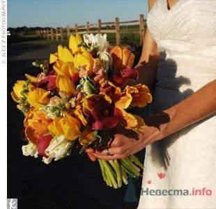 Фото 38515 в коллекции Разное (не мои работы) - Свадебный распорядитель - Бедрикова Оксана