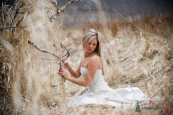 Невеста в белом длинном платье сидит посреди поля - фото 48657 Свадебный распорядитель - Бедрикова Оксана