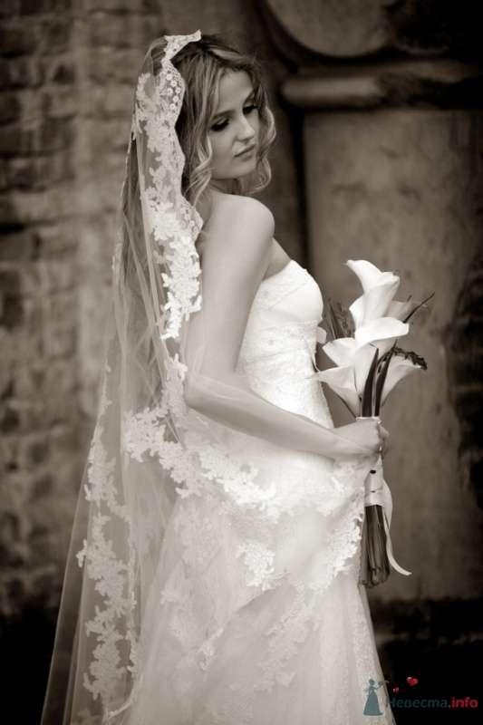 Фото 51323 в коллекции Разное (не мои работы) - Свадебный распорядитель - Бедрикова Оксана