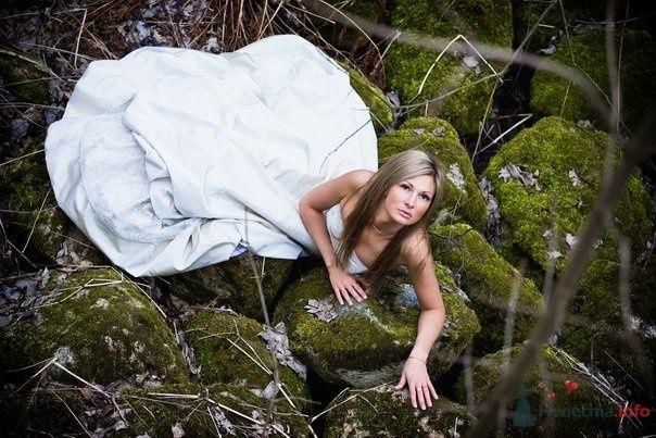Фото 55034 в коллекции Разное (не мои работы) - Свадебный распорядитель - Бедрикова Оксана
