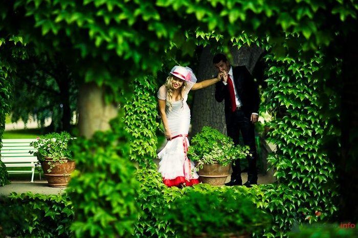 Фото 55129 в коллекции Разное (не мои работы) - Свадебный распорядитель - Бедрикова Оксана