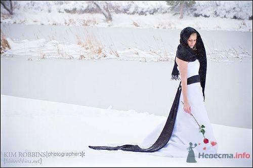 Фото 65523 в коллекции Разное (не мои работы) - Свадебный распорядитель - Бедрикова Оксана