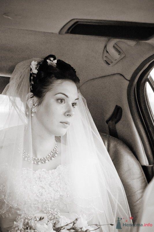 Фото 61672 в коллекции Моя свадьба!!! - Ксения007
