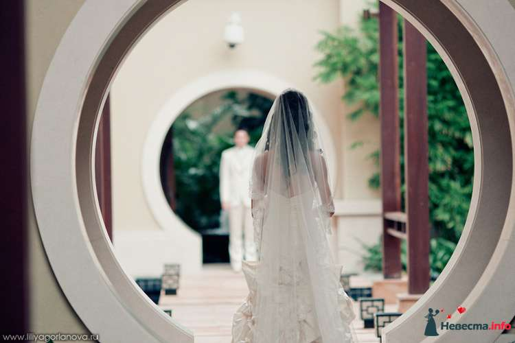 Фото 98626 в коллекции Мои фотографии - Chanel№5