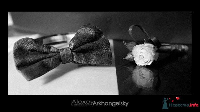 Фото 98685 в коллекции Мои фотографии - Chanel№5