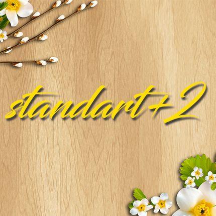 """Видеосъёмка полного дня - пакет """"standart+2"""""""
