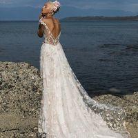 Beautiful Kataleya
