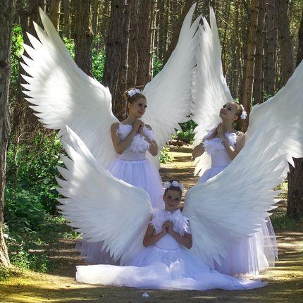 Шоу-программа Ангелы