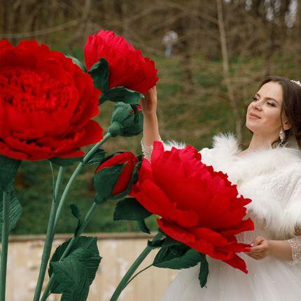 Пионовидная роза в аренду