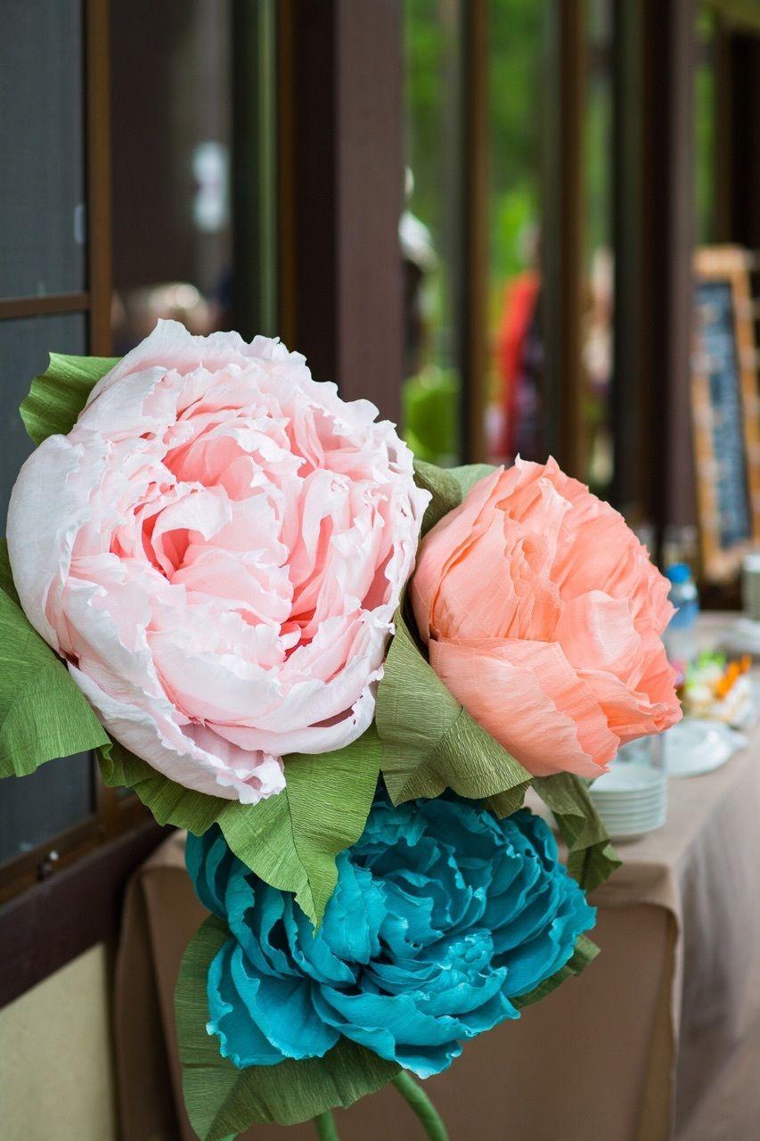 Ростовые цветы в аренду