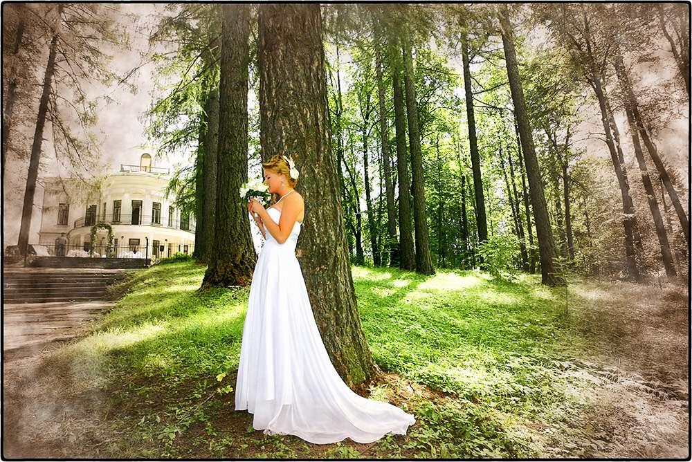 Фото 1322702 в коллекции Свадьбы - Свадебный фотограф Олег Дьяченко
