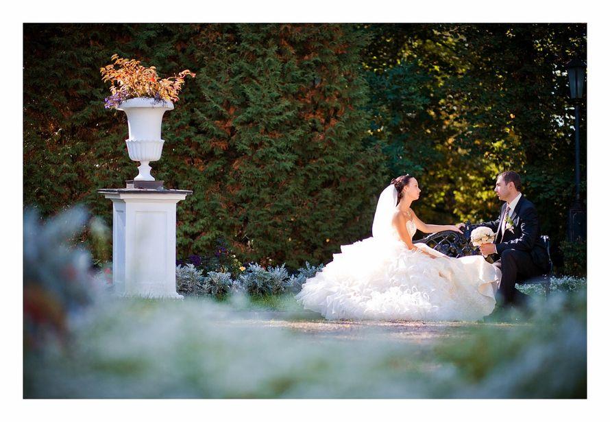 Фото 1322708 в коллекции Свадьбы - Свадебный фотограф Олег Дьяченко