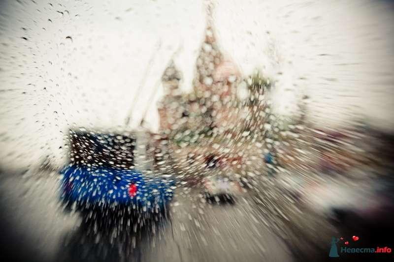 Фото 123299 в коллекции Мои фотографии - VOLKODAVVNV