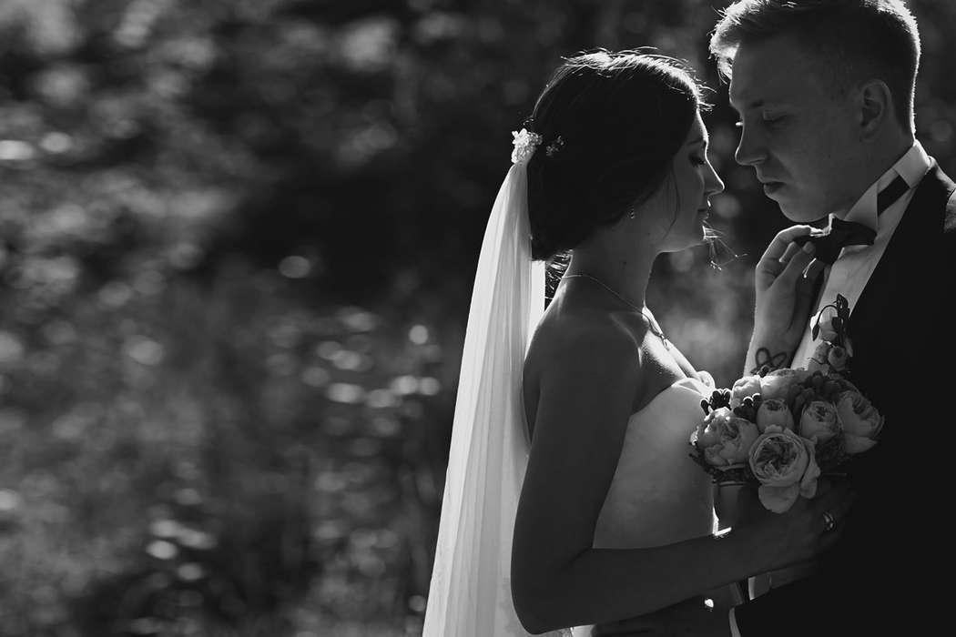пожеланиями всегда лучшие свадебные фотографы орла тем вас