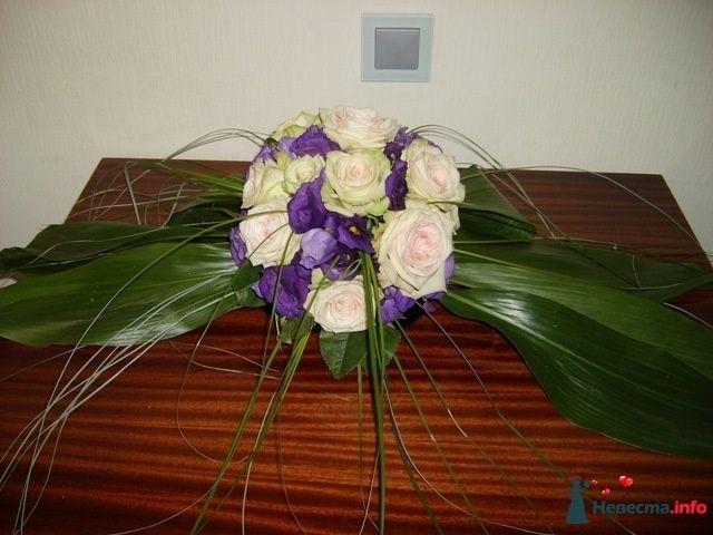 Фото 107209 в коллекции Мои фотографии - Подружка невесты - свадебный организатор и распорядитель