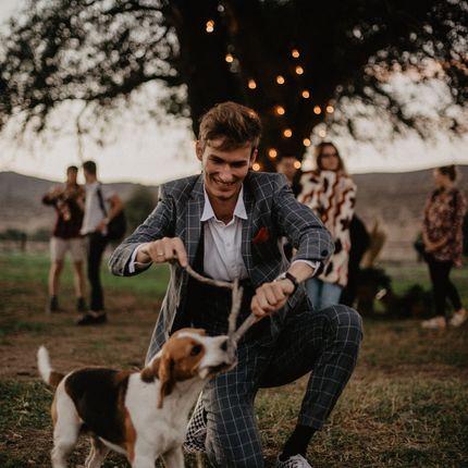 Проведение свадьбы - пакет Премиальный