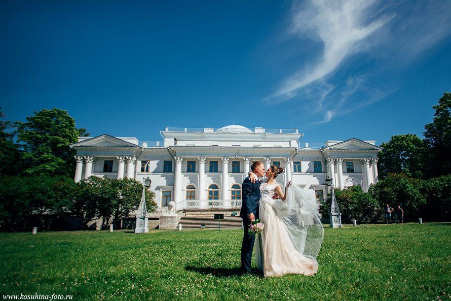 Фото 18587858 в коллекции Александрина и Владислав - Фотограф Аля Косухина