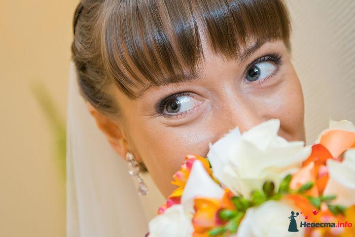 Фото 94050 в коллекции Свадьба 16.04.2010 - Дарьяночка