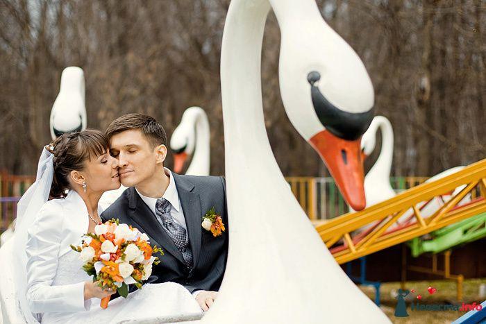 Жених и невеста сидят, прислонившись друг к другу, на карусели - фото 94088 Дарьяночка