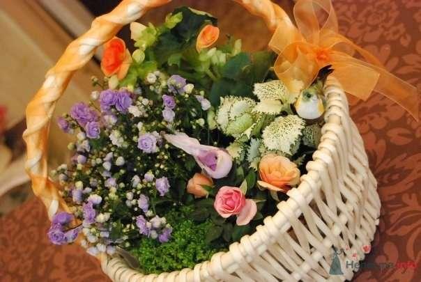 Фото 57332 в коллекции цветочные композиции - мояСовесть