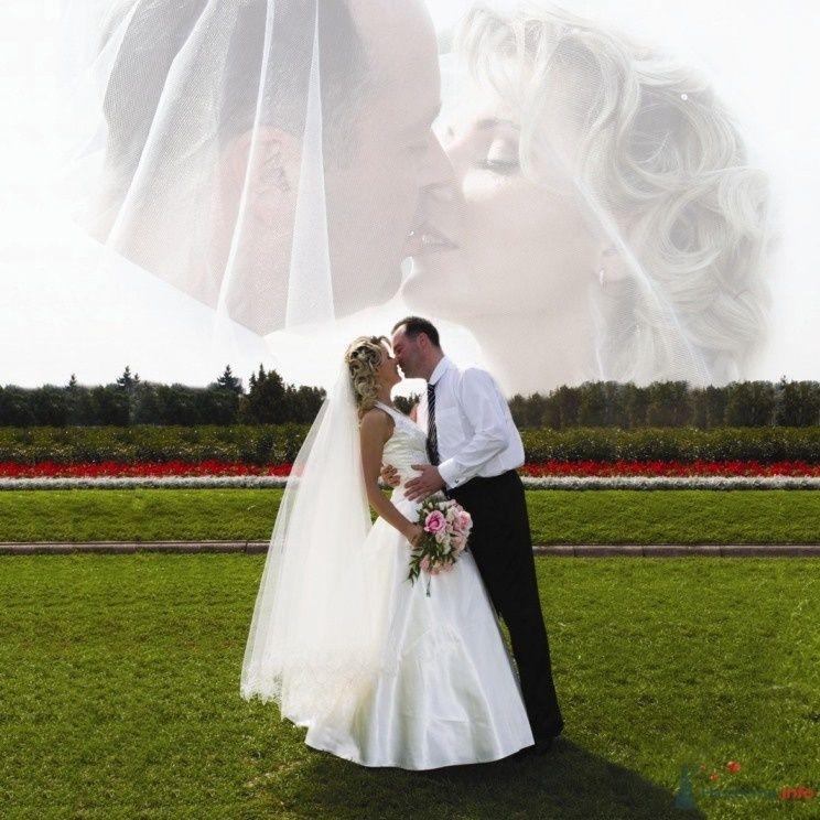 Фото 57371 в коллекции Свадебная книга - мояСовесть