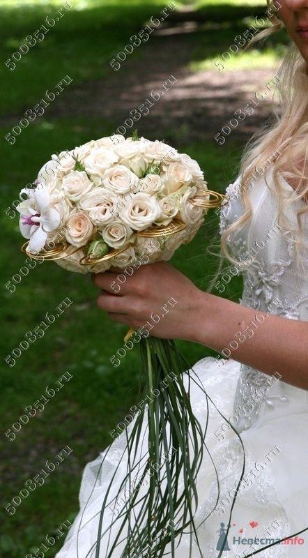 "Фото 78557 в коллекции Мои фотографии - Салон ""Svetlana Polushkina"" - свадебная флористика"