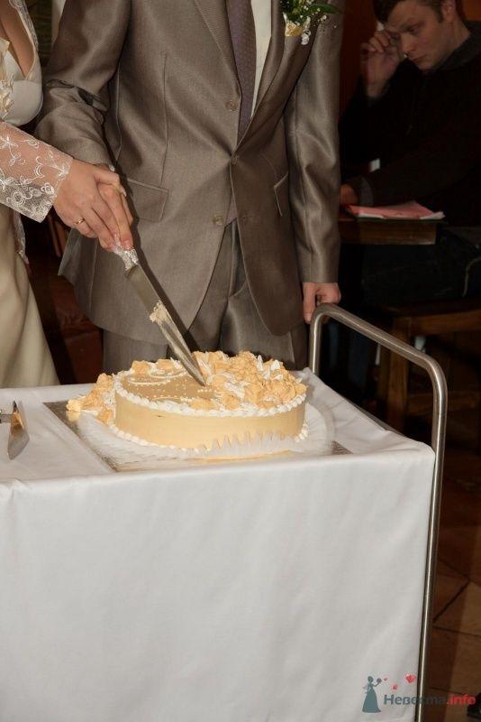 Фото 66222 в коллекции Наша свадьба