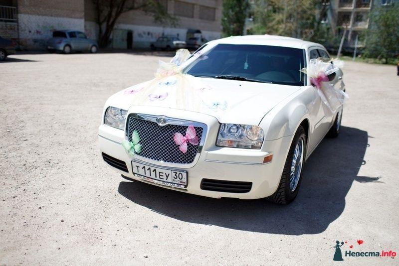 """Белый """"Chrysler"""", украшенный бабочками и бантами, во дворе жилого массива. - фото 110941 ellechica"""