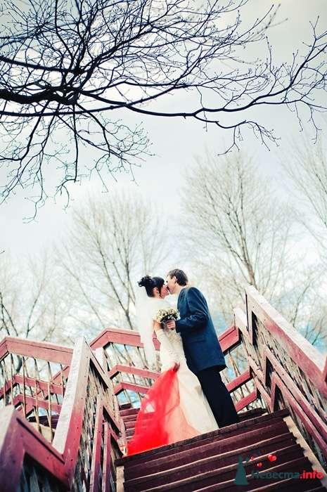 Фото 102554 - Невеста01