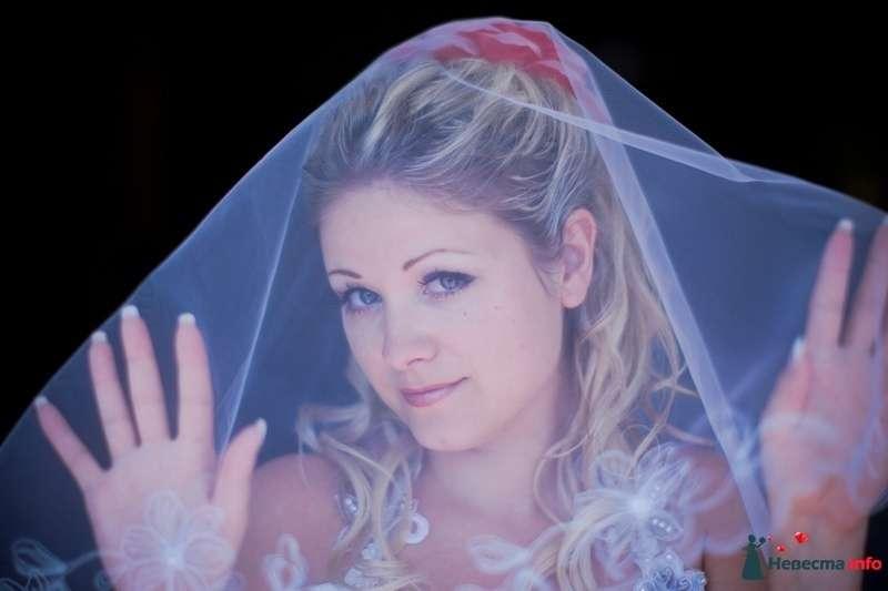 Фото 109638 в коллекции Наша Свадьба - Пер4инка