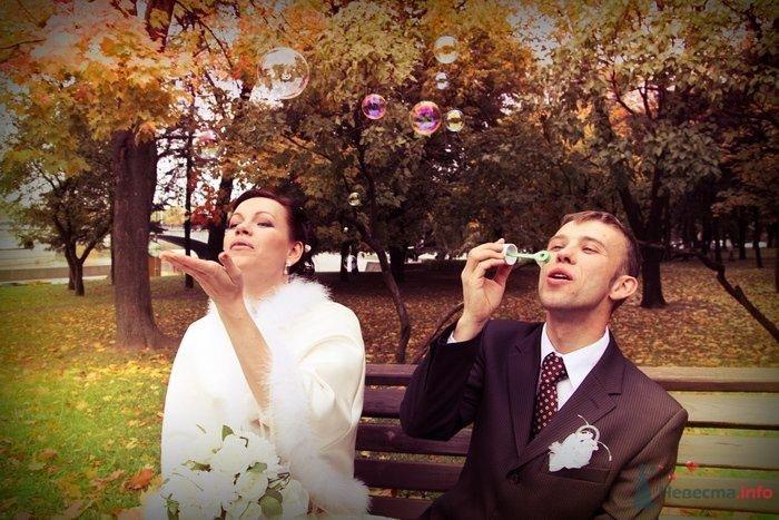 Фото 58695 в коллекции Свадебная фотосессия - fotosv