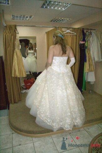 Фото 57334 в коллекции Свадьба: примерка платья