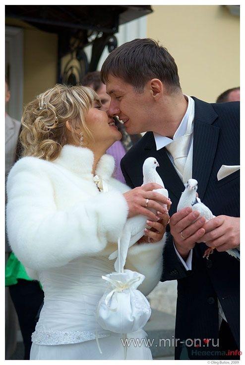 Фото 64985 в коллекции Наши клиенты! - МирОн - ваше свадебное агентство