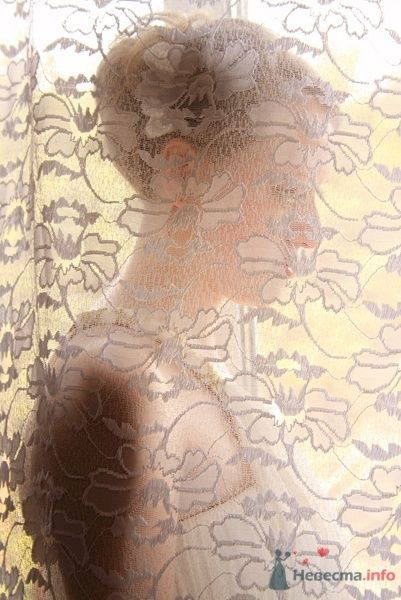 Фото 58464 в коллекции Cчастливый день Натальи и Владимира - Фотограф Захарова Наталья