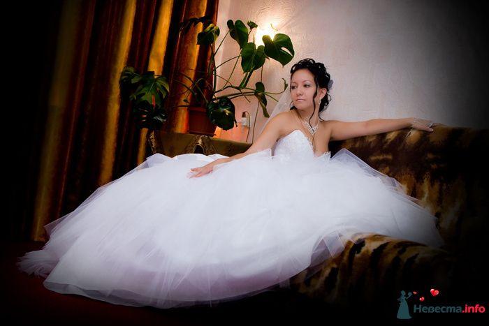 Фотограф Дмитрий Давыдов  - фото 101163 Lider Production Studio, фотосъемка